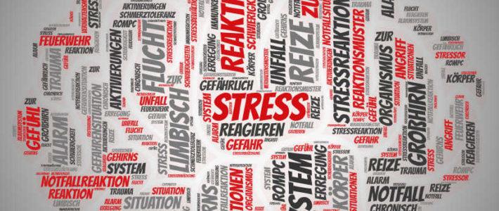 Stressreaktion