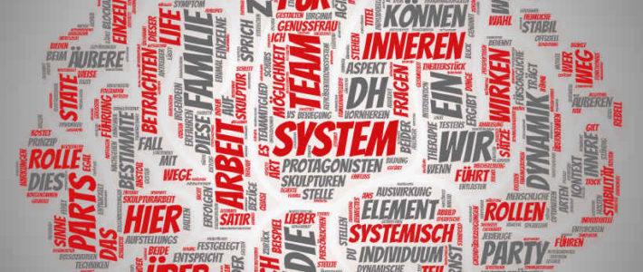 ROMPC im systemischen Kontext